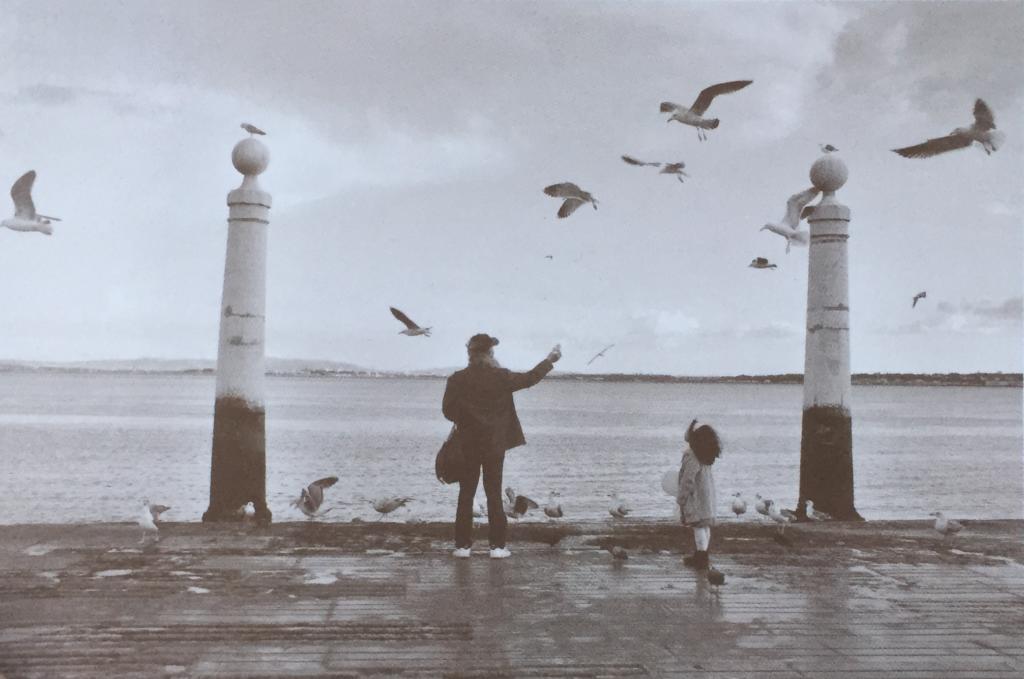 girl with birds, João Pereira Coutinho, Cais das Colunas